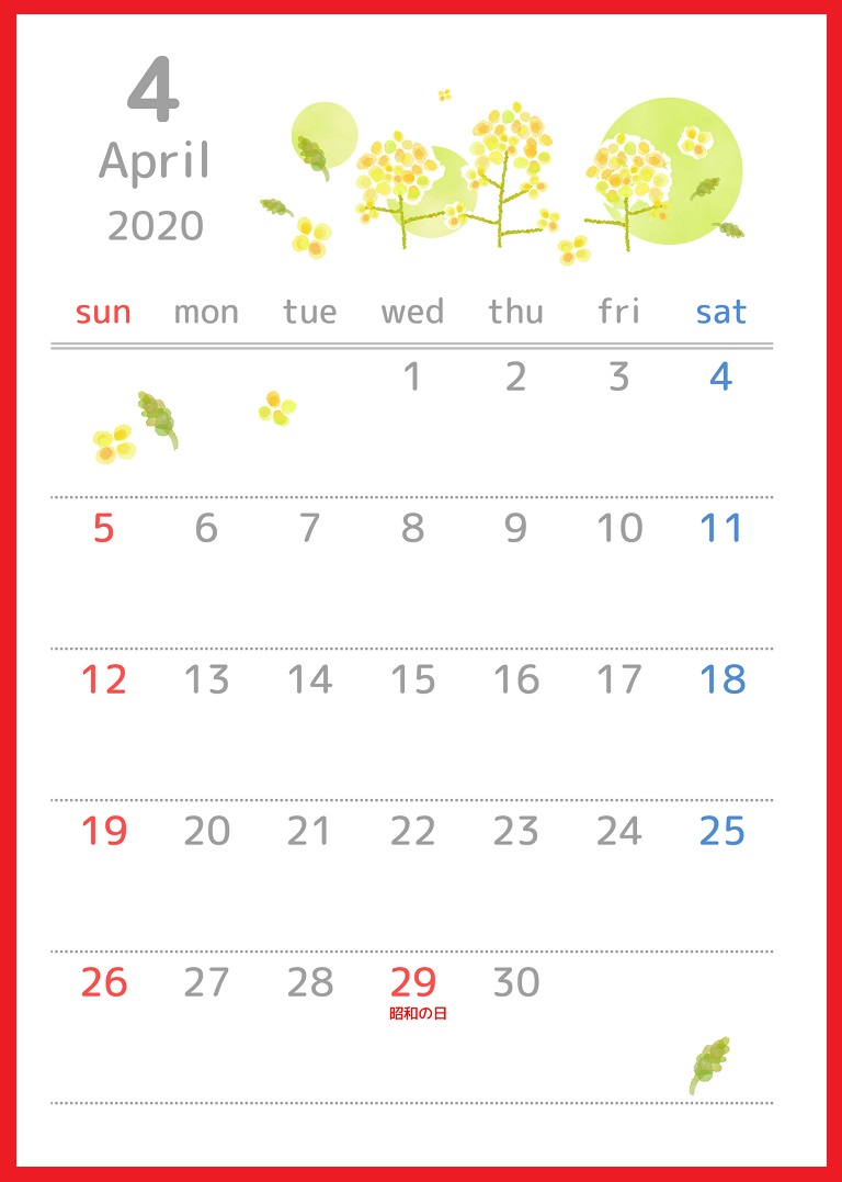 2020年4月縦型の「菜の花」イラストのカレンダー
