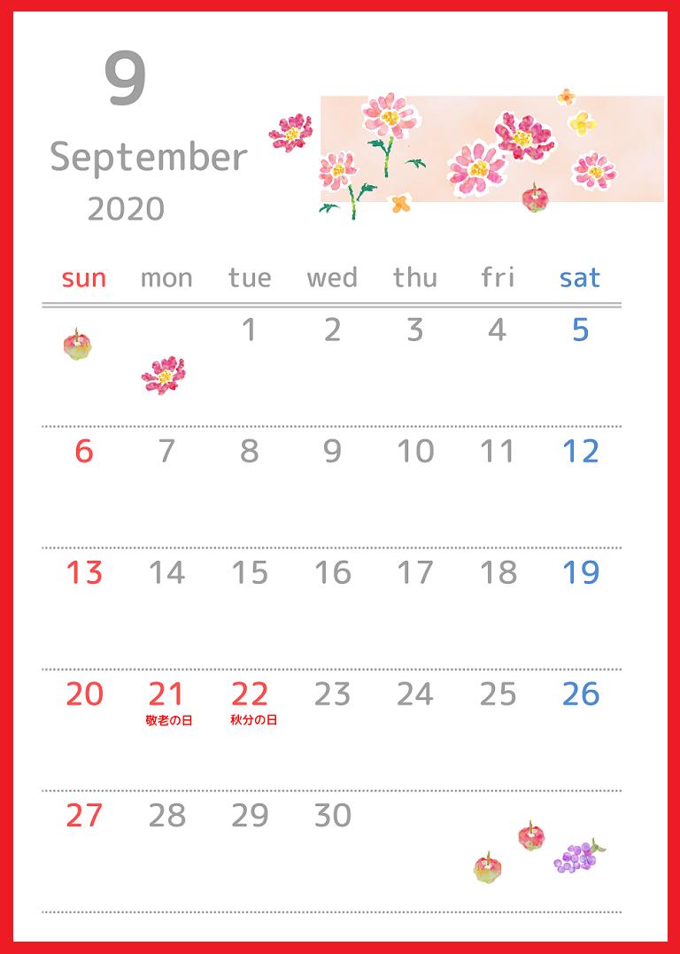 2020年9月縦型の「秋桜の花」イラストのカレンダー